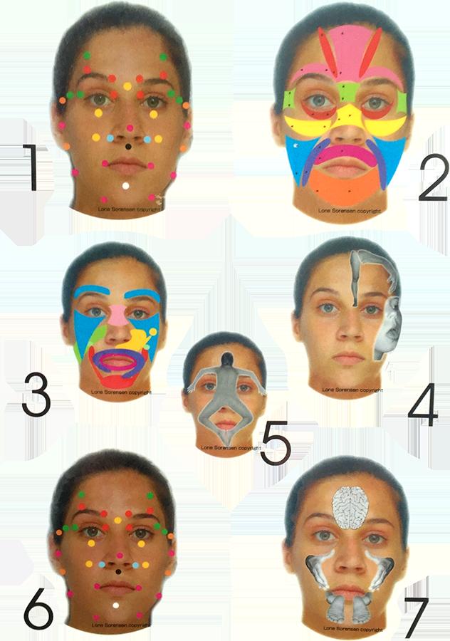 Facial Reflexology Seven Faces
