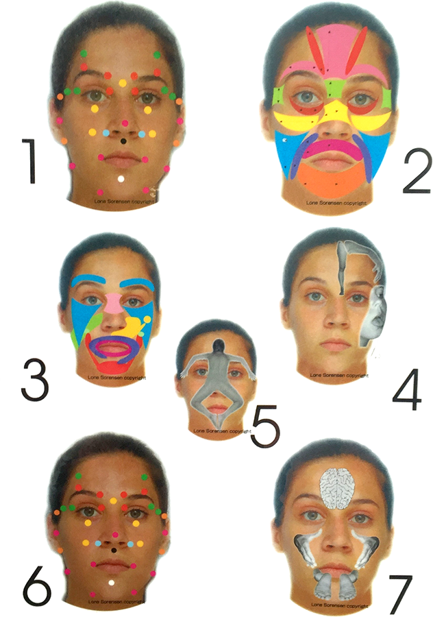 Facial Reflexology Seven Faces