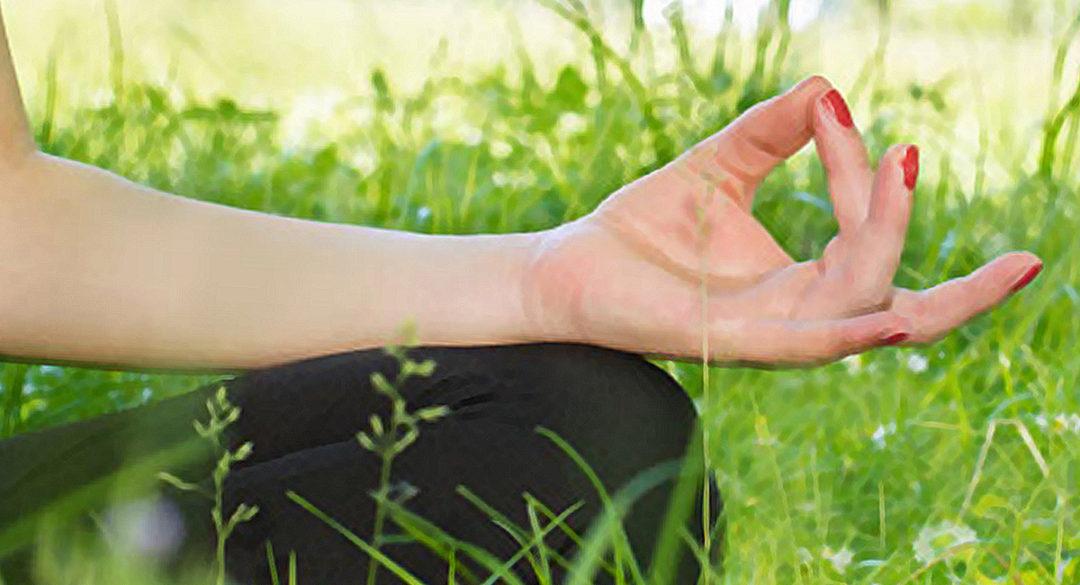 Meditation in Field