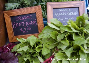 Lovely greens on sale