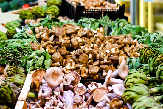 Big pile of fresh mushrooms and herbs on green market